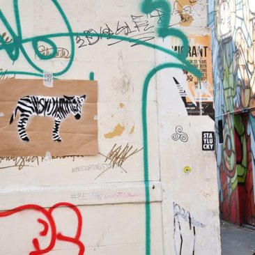 Zebra Tag, Free Art on a wrapping paper