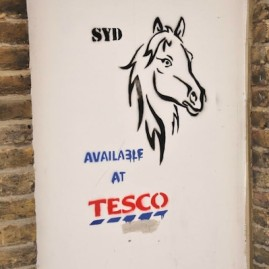 Protest for Tesco's Horse Meat..
