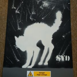 Electrified Cat – White